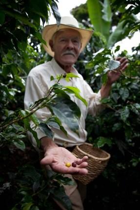 2013-colombie-café